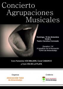 CONCIERTO AGRUPACIONES MUSICALES